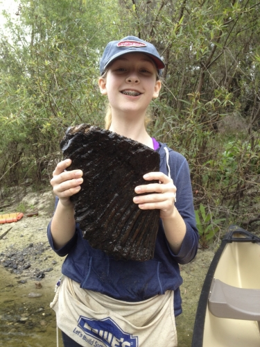 florida-fossil-hunting-2012-2