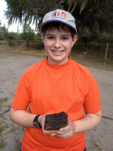 florida-fossil-hunting-2013-2