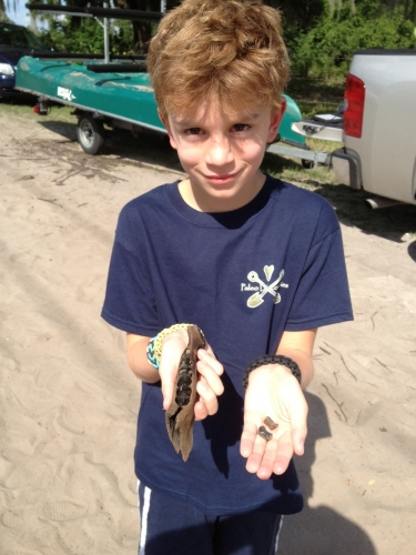 florida-fossil-hunting-2013-27