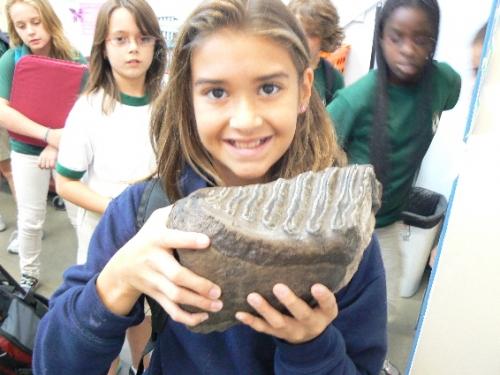 fossil-education-kits-8