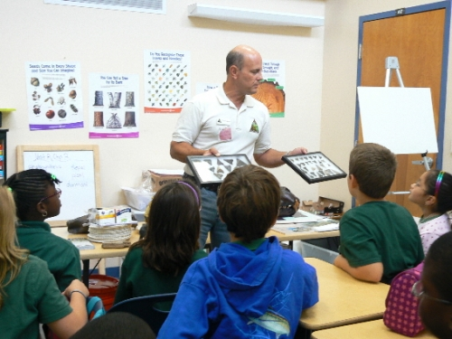 fossil-education-materials-15