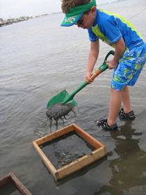 kids-fossil-hunting-parties-florida