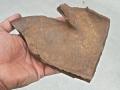 turtle-tortoise-fossils-6