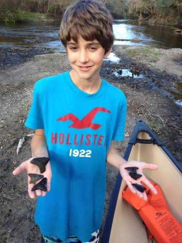 florida-fossil-hunting-2012-6