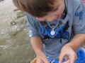 kids-fossil-hunting-parties-florida2