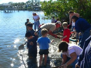 Kids Fossil Hunting Parties Florida
